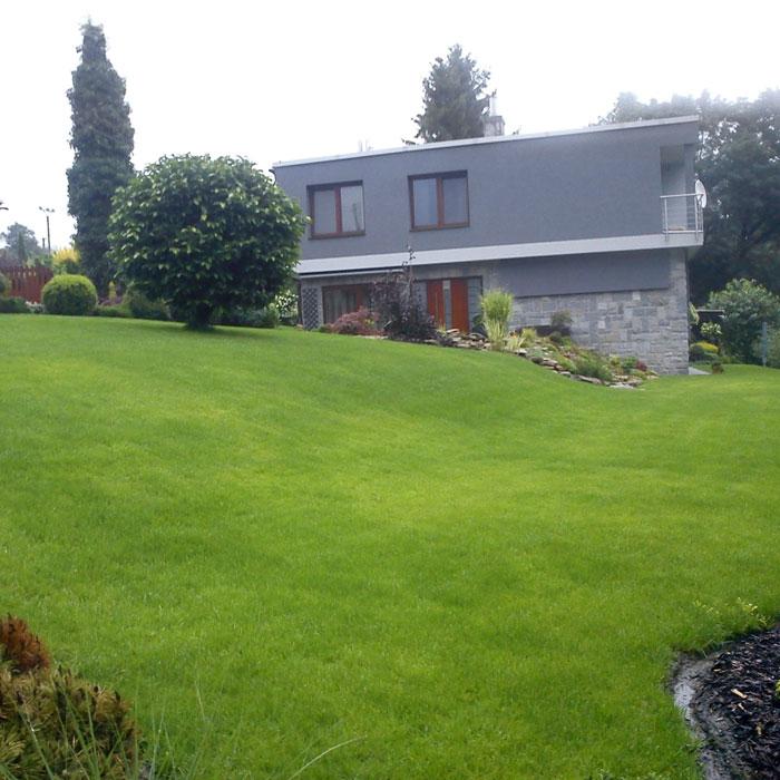 Setý trávník